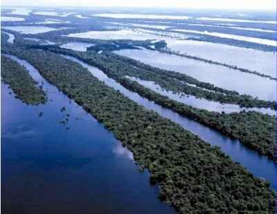 CENTRO DE TIERRA AMAZONAS