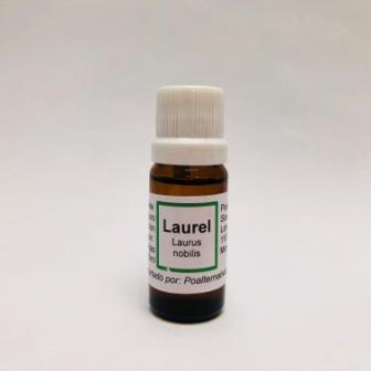 Laurel Aceite esencial 10ML