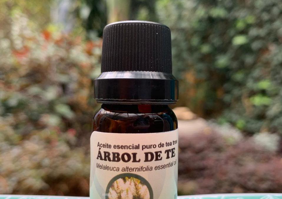 Árbol del Té Aceite Esencial 10 ml
