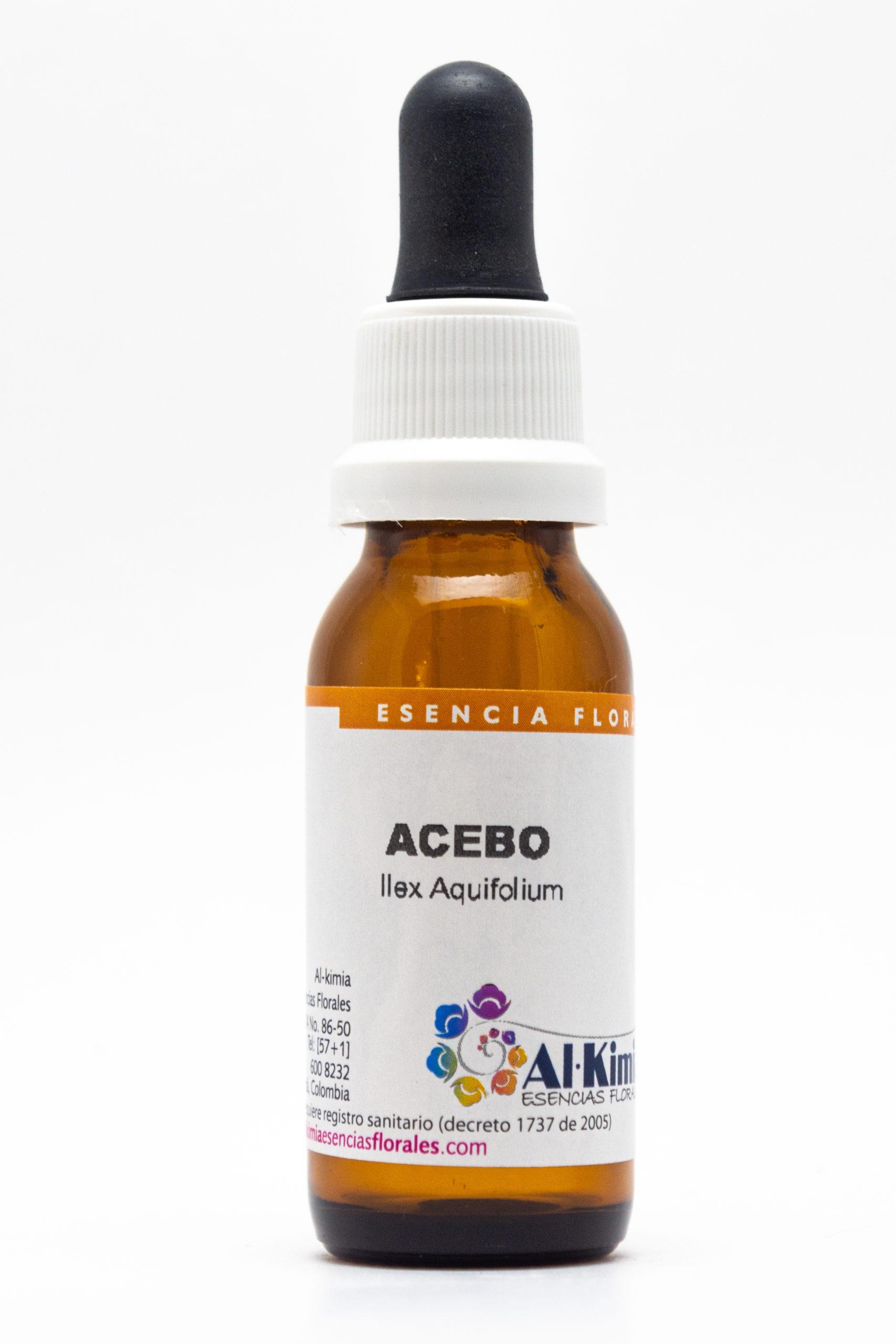Acebo Botella Stock
