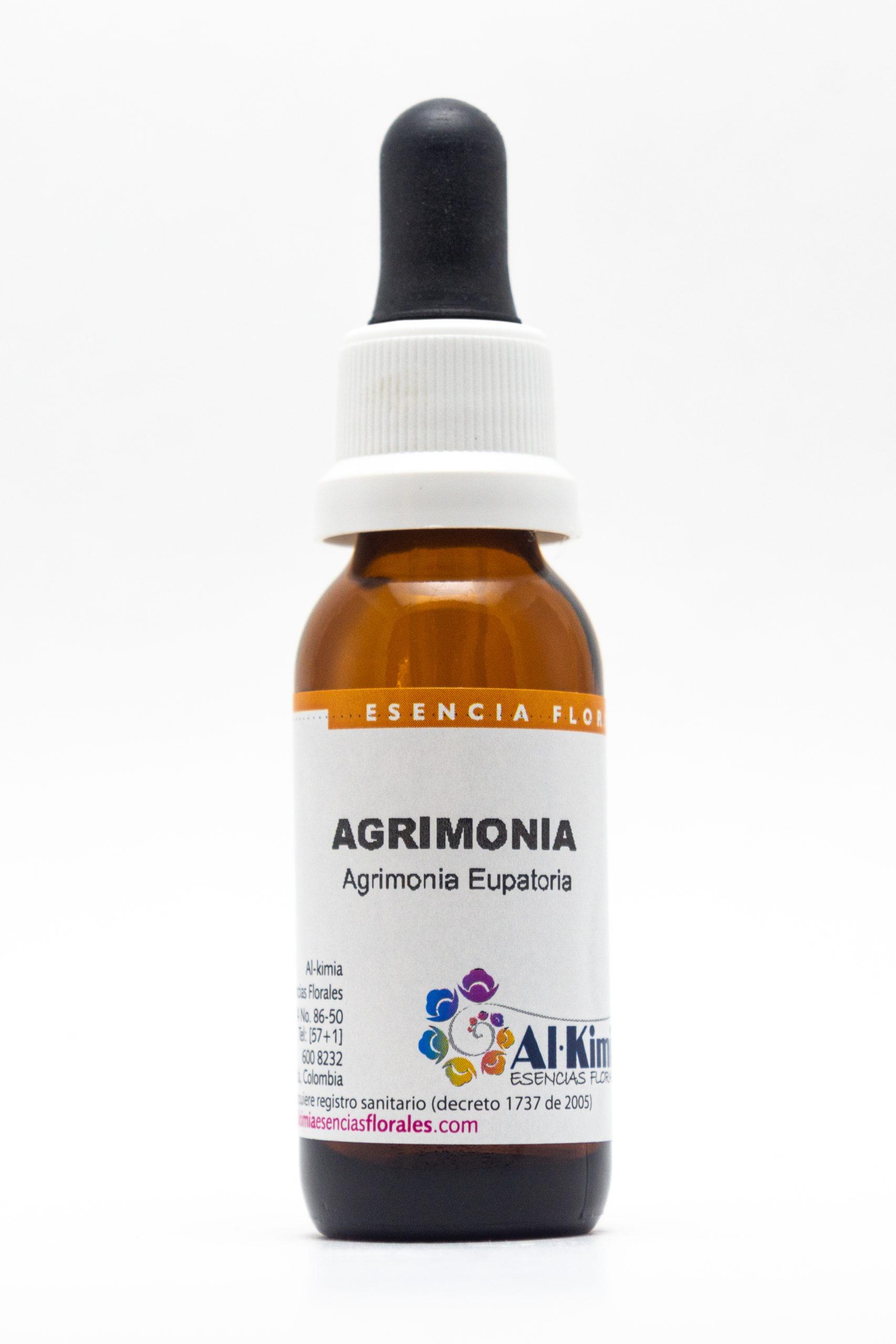 Agrimonia Botella Stock