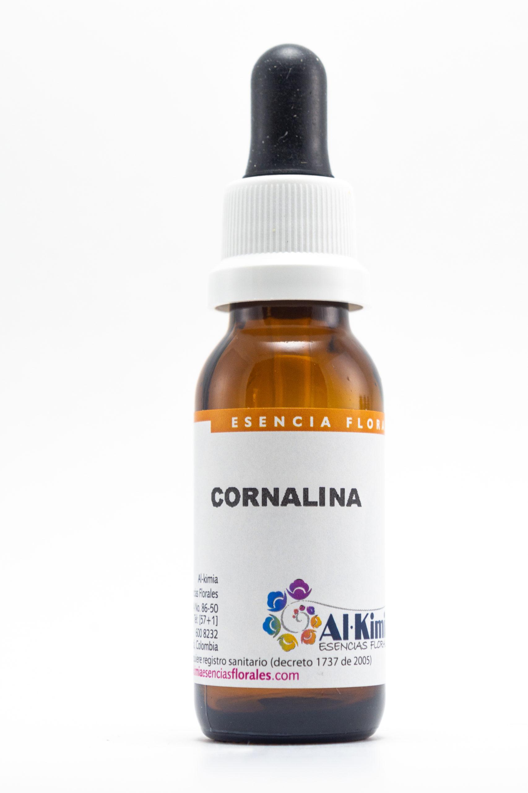Cornalina Botella Stock